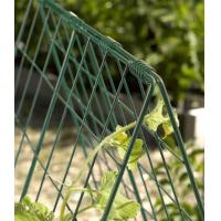 Quality Cucumber Trellis Cucumber trellis for raised beds or small garden for sale