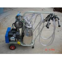 China Cow milking machine price on sale