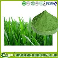 Quality Organic Barley Grass Powder, Organic Young Barley Grass Juice Powder for sale