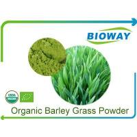 Quality Organic Barley Grass Powder for sale