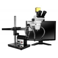 Buy cheap SSZ-II Stereo Zoom Trinocular Microscope Systems from wholesalers