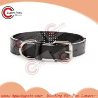 Quality RW-C002 Luxury Fashion Perforated Leather Dog Collar for sale