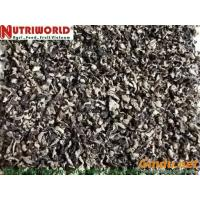 Quality black fungus shred for sale