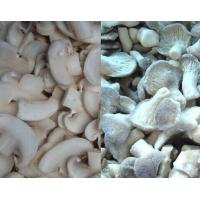 China IQF dry Mushroom Cut Slice on sale