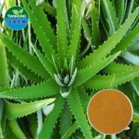 Quality Herbal Aloe Extract /Polysaccharide, Aloin, Acemannan for sale