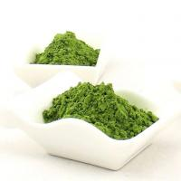 Quality Herbal Extract Wheatgrass Juice for sale