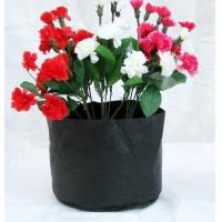Buy cheap Sunshine 04 fabric grow pot from wholesalers