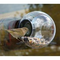Buy cheap Clear Circular Window Bird Feeder from wholesalers