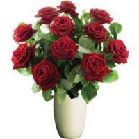 Buy cheap Valentine's Day Beautiful Red Roses, Bunches.No.12 send flower to australia sydn from wholesalers