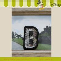 Buy cheap Letter B sequin embroidery badge from wholesalers