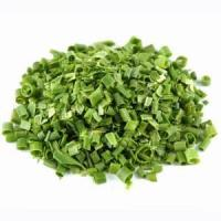 Quality Freeze Dried Germany Chives,Hot Sale FD Chives,Top Quality Ingredient for Instant Food for sale