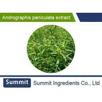Quality Andrographis paniculata extract ,98% Andrographolide,common Herb extract for sale
