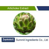 Quality Artichoke Extract 5% Cynarin,Chlorogenic Acids,Cynara Scolymus L for sale