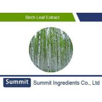 Quality Birch Leaf/Bark extract 5:1, Betula Alba Bark Extract, Betula platyphylla Suk extract for sale