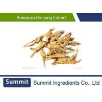 Quality Panax quinquefolius extract,American Ginseng Extract 80% Ginsenosides, powder,10% polysaccharide for sale
