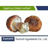 Quality Agaricus Blazei Extract 4:1murrillPolysaccharide 20%Better quality for sale