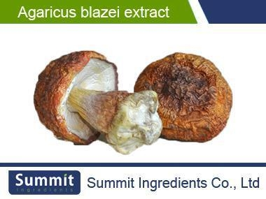 Buy Agaricus Blazei Extract 4:1murrillPolysaccharide 20%Better quality at wholesale prices