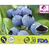 Quality Pure Natural Acai Berry Powder for sale