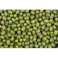 Quality Mung Bean for sale