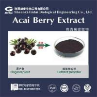 Quality natural acai berry powder/acai berry fresh fruit/acai berry extract for sale