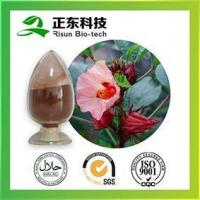 Quality High Quality Roselle Extract Powder 10:1 Supplier for sale
