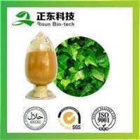 Quality hot sale powder Ivy Extract HederacosideC for sale