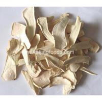 Quality Dehydrated vegetables Dehydrated Horseradish for sale