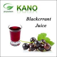 Black Currant Juice Concentrated