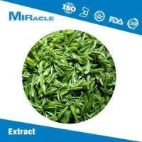 Quality Green Tea Extract|Catechin|EGCG|L-Epicatechin|Tea Polyphenols Powder for Sale for sale