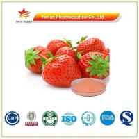 Quality Pure Strawberry Extract Powder for sale