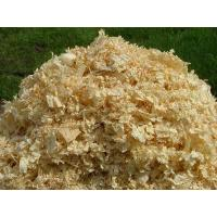 Quality blog solution for Making Pine Sawdust into Wood Pellets for sale