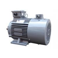 China Original quality Vertical Hollow Shaft siemens electric motors for belt drive on sale