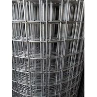 Quality welded wire mesh/electro galvanized before welded for sale