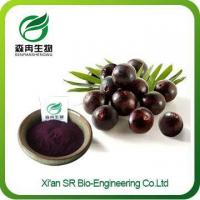 Quality Acai Berry Powder, Hot Sale Acai Extract, Organic Freeze Dried Acai Powder for sale