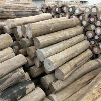 China Wholesale Hot Selling Durable Lasting Top Quality Burma Teak Log Prices on sale