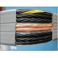 Drag chain of cable