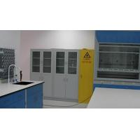 Safety cabinet Product  Cabinet 01