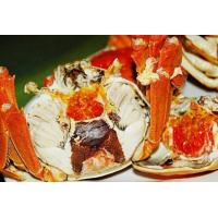 Quality Baoying lake crabs for sale