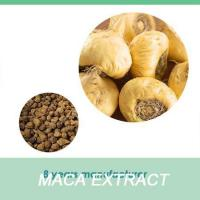 Quality maca dried root 100% pure maca food for sale