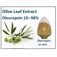 Quality Olive Leaf Extract Oleuropein 10~98% HPLC for sale
