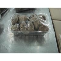 Quality Fresh Mushroom TC0101-03 for sale