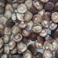 Quality Canned Shiitake for sale