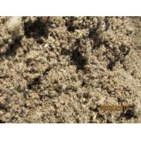 Quality Cottonseed hulls for sale