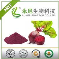 Quality Red Beet Root Powder Food Grade for Functional Products for sale