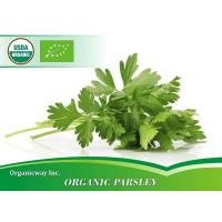 Quality Organic Parsley for sale