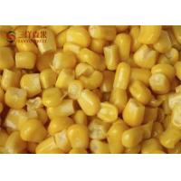 Quality Safety Frozen Sweet Corn Kernels Organic Fruit With 8 - 13% Sweetness for sale