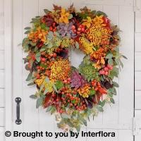 Buy cheap Autumn Enchantment Wreath from wholesalers