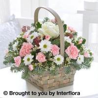 Buy cheap Arctic Beauty Basket from wholesalers