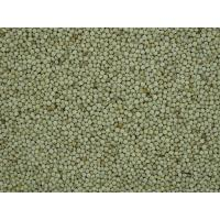 Quality WHITE PERILLASEEDS for sale