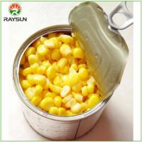 Buy cheap Sweet Corn In Can from wholesalers